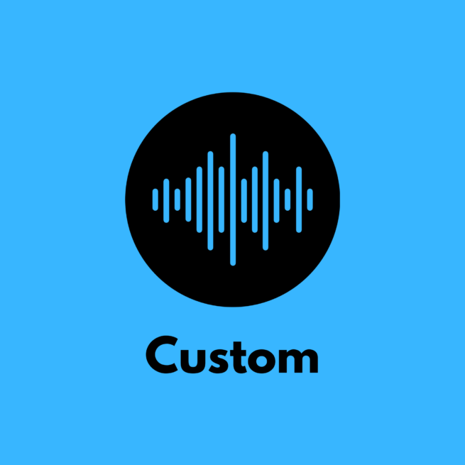 PT Custom